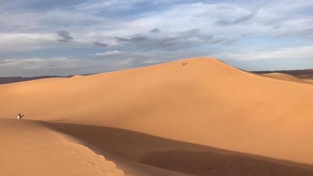 sahara-40